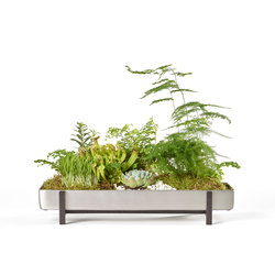 Greenery Flower Tray | Plant pots | Design House Stockholm