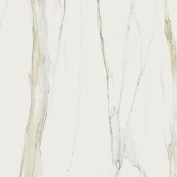 Marble Calacatta Gold A | Planchas | FLORIM stone