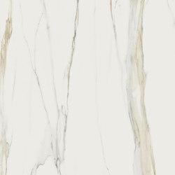 Marble Calacatta Gold B | Ceramic panels | FLORIM