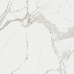 Marble Statuario A | Planchas | FLORIM stone
