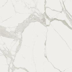 Marble Statuario B | Panneaux | FLORIM stone