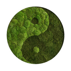 Circle | Pole moss yin and yang 80cm | Wall decoration | styleGREEN
