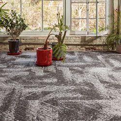 Outlier? | Wall-to-wall carpets | Bentley Mills