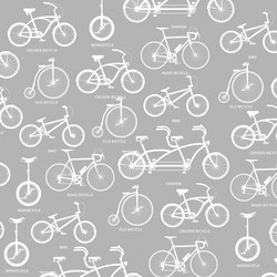 Bicycle | Wandbilder / Kunst | INSTABILELAB