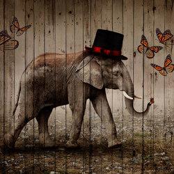 Butterfly Phant | Quadri / Murales | INSTABILELAB