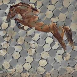 Crazy Horse | Wall art / Murals | INSTABILELAB