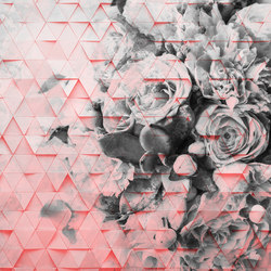Decomposed Rose | Wall art / Murals | INSTABILELAB