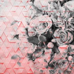 Decomposed Rose | Quadri / Murales | INSTABILELAB