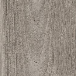 Class Wood Grey | Lastre ceramica | Casalgrande Padana