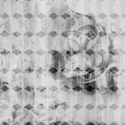 Koi | Quadri / Murales | INSTABILELAB
