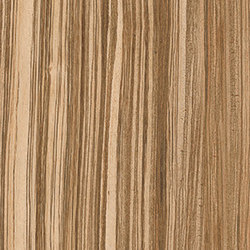 Geowood Zebrawood | Ceramic panels | Casalgrande Padana