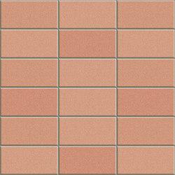 Anthologhia MOS 2031 | Mosaici ceramica | Appiani