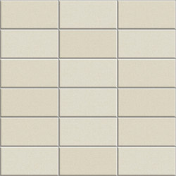 Anthologhia MOS 2025 | Mosaicos de cerámica | Appiani