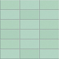 Anthologhia MOS 2021 | Mosaici ceramica | Appiani