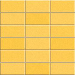 Anthologhia MOS 2029 | Ceramic mosaics | Appiani