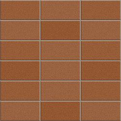 Anthologhia MOS 2002 | Mosaici ceramica | Appiani