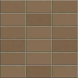 Anthologhia MOS 2027 | Mosaicos de cerámica | Appiani