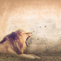 Roar Of The Lion | Wall art / Murals | INSTABILELAB