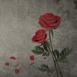 Roses | Peintures murales / art | INSTABILELAB