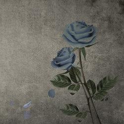 Roses | Quadri / Murales | INSTABILELAB