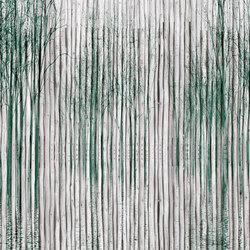 Shady | Arte | INSTABILELAB