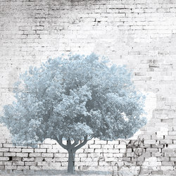 The Tree And The Wall | Wandbilder / Kunst | INSTABILELAB