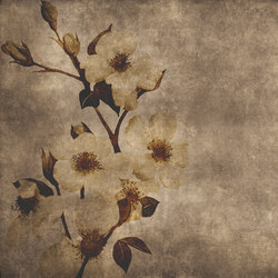 Winter Flower | Wall art / Murals | INSTABILELAB