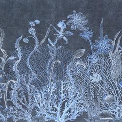 Reef Aquarium | Bespoke wall coverings | GLAMORA