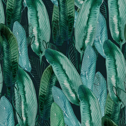 Platano | Wall coverings / wallpapers | Inkiostro Bianco