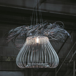Anemone Suspension | Suspended lights | Quasar
