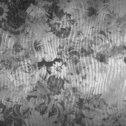 Decor | Canopo | Arte | INSTABILELAB