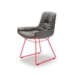 Leya | Armchair Low mit Drahtgestell | Stühle | Freifrau Sitzmöbelmanufaktur