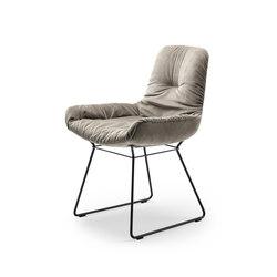 Leya | Armchair Low with wire frame | Sillas | FREIFRAU MANUFAKTUR