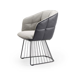 Marla | Armchair High with harp frame | Sillas | Freifrau Sitzmöbelmanufaktur
