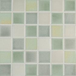 2x2 Field Netted | Mosaïques céramique | Pratt & Larson Ceramics