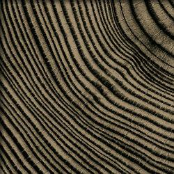 Convergence - Sepia | Glas Fliesen | Crossville