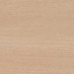 Essences | Elm 7,5X30 | Floor tiles | Marca Corona