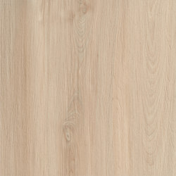 Essences Extra | Elm 60 Rett | Tiles | Marca Corona