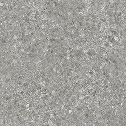 Xtra Ceppo di Gre-R Cemento | Piastrelle ceramica | VIVES Cerámica