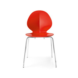 Basil | Chairs | Calligaris