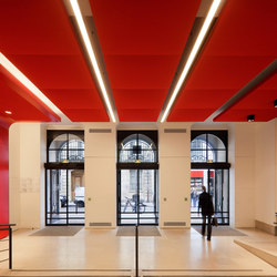 Stereo acoustic panels suspended in clusters | Acoustic ceiling systems | Texaa®
