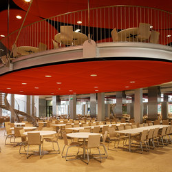 Single-sided Stereo acoustic panels | Suspended ceilings | Texaa®