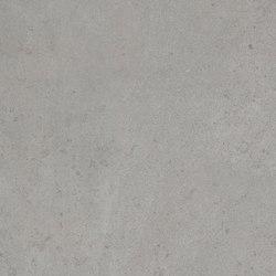 Amarcord Piombo | Carrelage céramique | Rondine