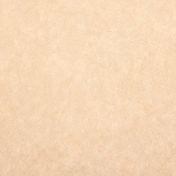 STATUS - Solid colour wallpaper EDEM 9009-22 | Wall coverings / wallpapers | e-Delux
