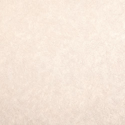 STATUS - Solid colour wallpaper EDEM 9009-23 | Wall coverings / wallpapers | e-Delux