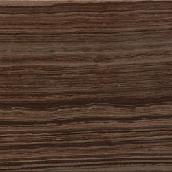 Eramosa Brown | Ceramic tiles | Rondine