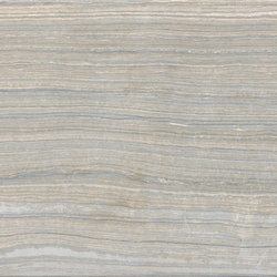 Eramosa Silver Naturale | Baldosas de cerámica | Rondine