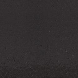 Tempio Gloss Colours Grey Arcadia EB3155 | Systèmes de façade | Tempio