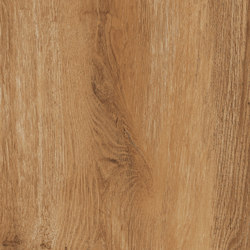 Ever Oak | Ceramic panels | Rondine