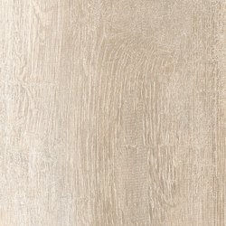 Greenwood Beige | Ceramic tiles | Rondine